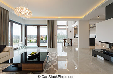 Expensive living room - Photo of spacious expensive living...