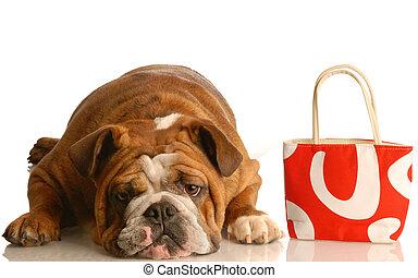 expensive vet bill - english bulldog laying down beside red...