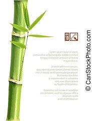 experiência., bambu, vetorial, eps10., ilustração
