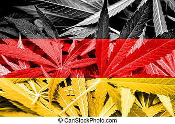 experiência., droga marijuana, legalization, bandeira,...