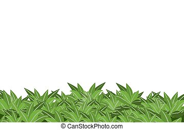 experiência., folhas, branca, verde, isolado