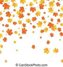 experiência., folhas, outono, queda