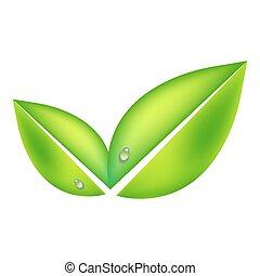 experiência., folhas, vetorial, verde branco