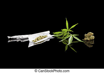 experiência., marijuana
