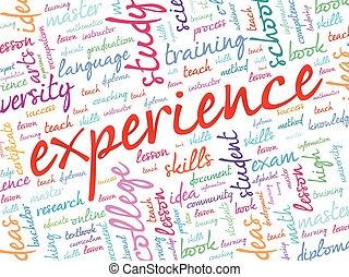 Experience word cloud