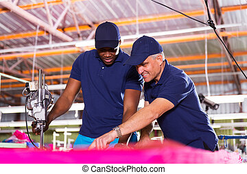 textile factory co-workers cutting fabric - experienced...