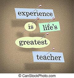 experiencia, life's, más grande, profesor, -, vivo, para,...