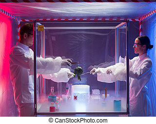 experimenting on vegetables in sterile chamber