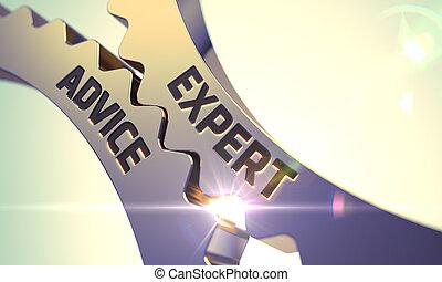 expert, conseil, sur, doré, gears.