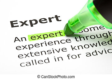 Definition of the word Expert highlighted with green marker.