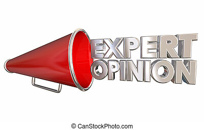 Expert Opinion Megaphone Bullhorn Words 3d Illustration