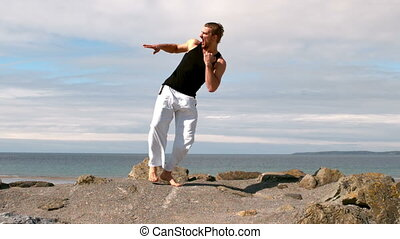 expert, pratiquer, arts, martial