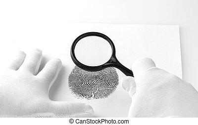 expert, regarder verre, par, fingerprint., magnifier, criminologie