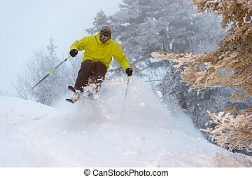 Expert skier on a powder day. - An expert skier on a powder...