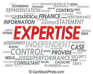 EXPERTISE word cloud