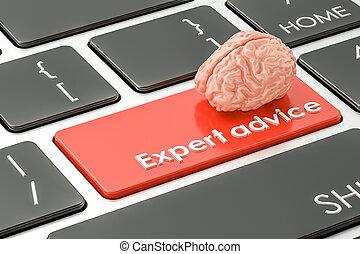 experto, consejo, botón, interpretación, llave, keyboard., 3d
