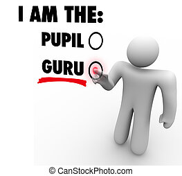 experto, gurú, líder, persona, profesor, elegir, guía