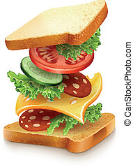 exploded view of sandwich ingredients with cheese, tomatoes, lettuce and sausage. Vector illustration isolated on white background EPS10. Transparent objects used for shadows and lights drawing.