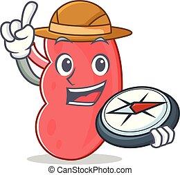 Explorer kidney mascot cartoon style