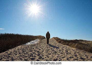 Exploring a dune 1