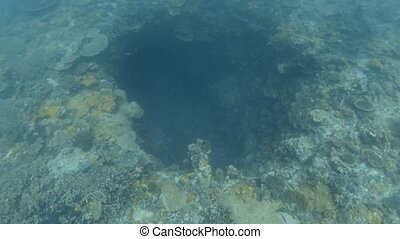 Exploring a sinkhole on the ocean floor