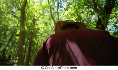 Exploring the green forest - A shot of a man wearing a red...