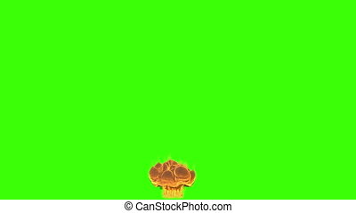 Explosion with smoke chroma key