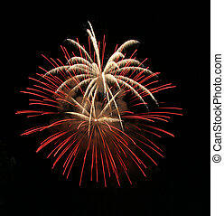 Explosive Firework Display - Colorful Firework Bursts