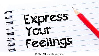 expreso, su, sentimientos, texto, escrito, en, cuaderno,...