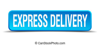 express delivery blue 3d realistic square isolated button