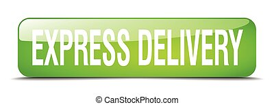 express delivery green square 3d realistic isolated web button