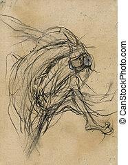 expressive drawing - the metamorphosis