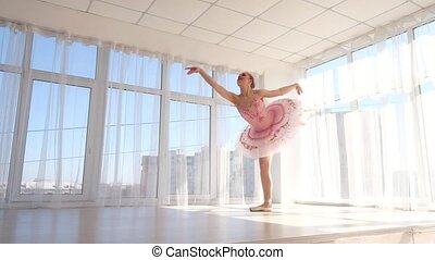 Exquisite female ballet dancer in pink tutu practicing and...