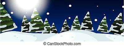 extérieur, hiver, scène nuit