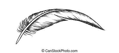 extérieur, perdu, vendange, élément, vecteur, plume, oiseau