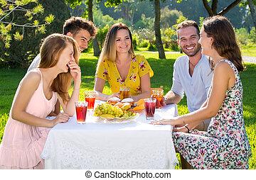 extérieur, pique-nique, groupe, park., apprécier, amis