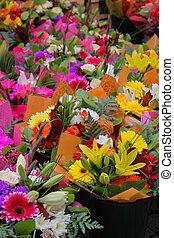 extérieur, stockholm, fleurs, suède, différent, coloré, vente, marché