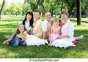 extendido, parque, juntos, familia