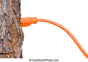 Extension cord in a tree trunk, can represent renewable resources or consumption of resources/forests