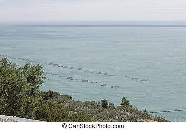 Extensive aquaculture in the Mediterranean sea