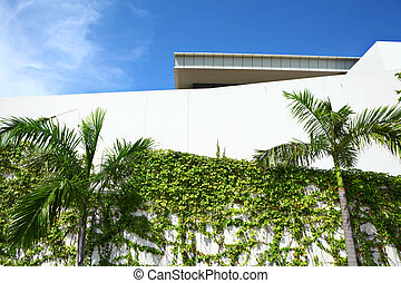 Exterior of the architecture with plant