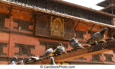 Exterior roof of beautiful Hindu temple. Exterior architecture with golden elements of Hindu temple in sunlight, Nepal. Lalitpur, Patan Kathmandu. pigeons are sitting in the foreground.