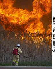 extinguishes, énorme, courageux, brûler, pompier