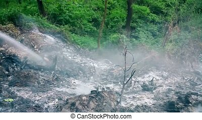 Extinguishing a fire in a forest in summer