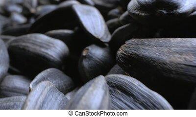 extrêmement, gros plan, detailed., seeds., noir, tas, espace copy