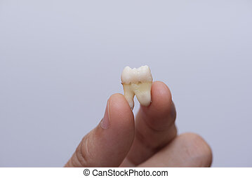 extracted, filozofia, palce, dzierżawa, ząb