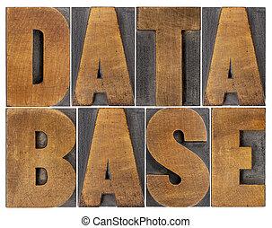 Extracto, palabra, base de datos