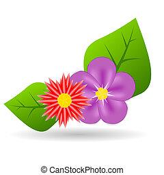 Extracto,  vector, colorido, flores, Ilustración