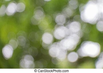 Extracto, verde, Plano de fondo, naturaleza