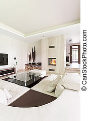 Extravagant lounge room for art lovers - Splendid living ...